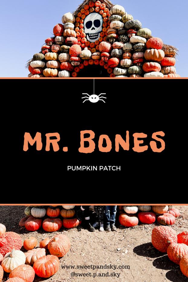 Mr. Bone's Pumpkin Patch   Culver City, CA