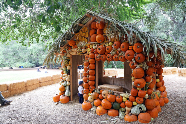 Halloween Time at Descanso Gardens