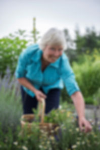 Organic Tea Oregon Mama-Te-a