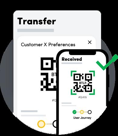 Transfer BTLR Preferences.png