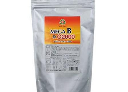 メガB&C2000