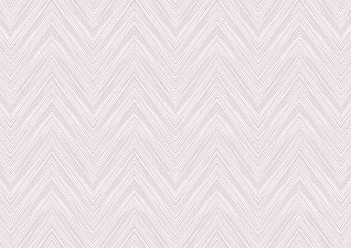 Sandy Chevron blush mini 8.jpg