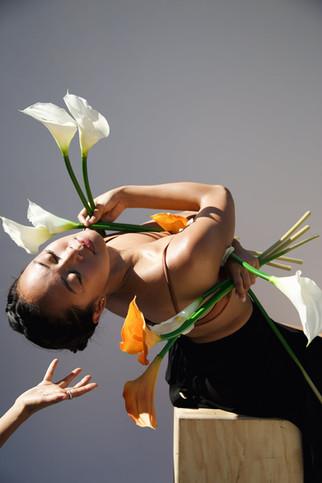 Agave Americana | A. Ordaz Dance