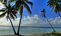 BWEJUU ISLAND.jpg