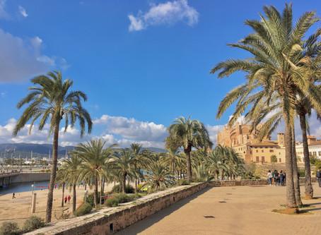 Mallorca télen? Kipróbáltuk!