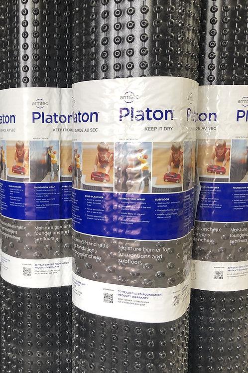 """Planton Membrane 6'6"""""""