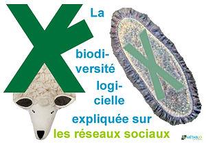 20200901-biodiversité_logicielle-metabl