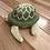 Thumbnail: Sea Turtle - Yellow