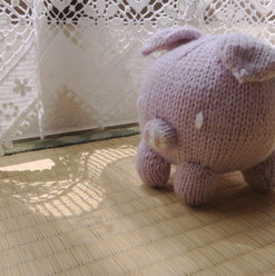 Pig-Cover-1-1024x768.jpg