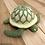 Thumbnail: Sea Turtle - Green