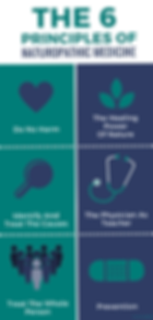 6-principles-of-naturopathic-medicine_ed