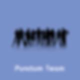 Punctum_Team