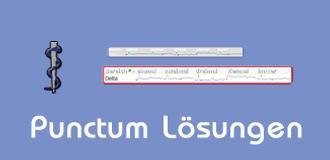 Punctum KG Lösungen