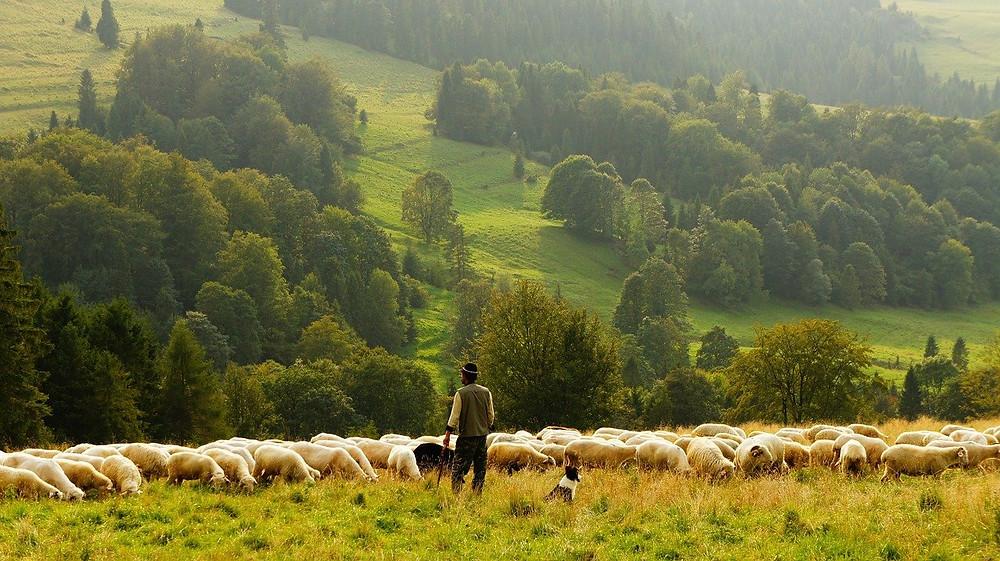 El labriego o el pastor suelen ser un elemento común en muchas leyendas del norte de España