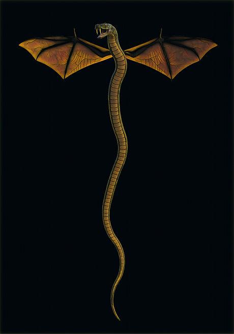 El dragón de El libro del búho