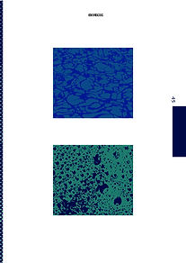 New Dimensions_Pagina_13.jpg