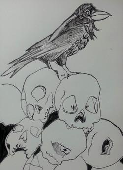 Raven on Skulls