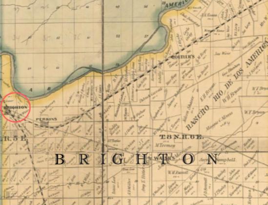 Vol.65 No.1 Brighton (Print)