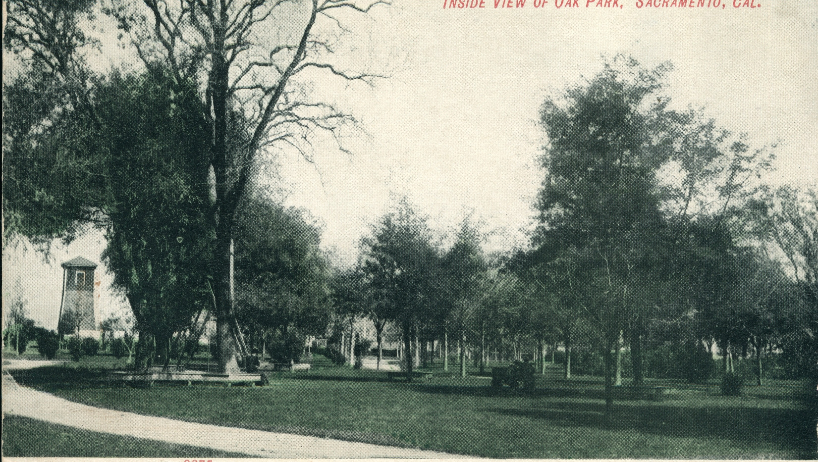 Inside View of Oak Park, Sacramento, California