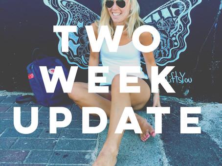 Two Week Update