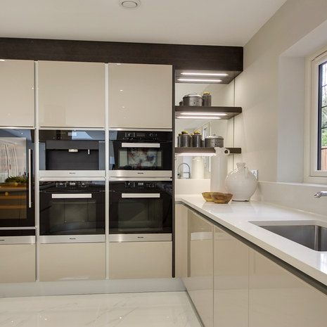 Kitchen Project in Surrey