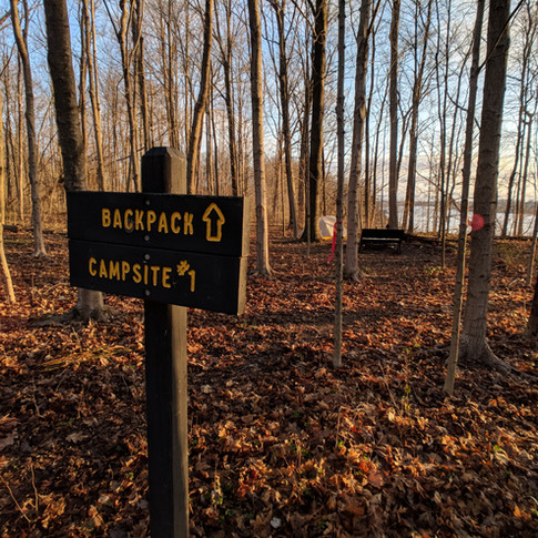 I hiked the loop in the opposite direction, so I stayed at site #1