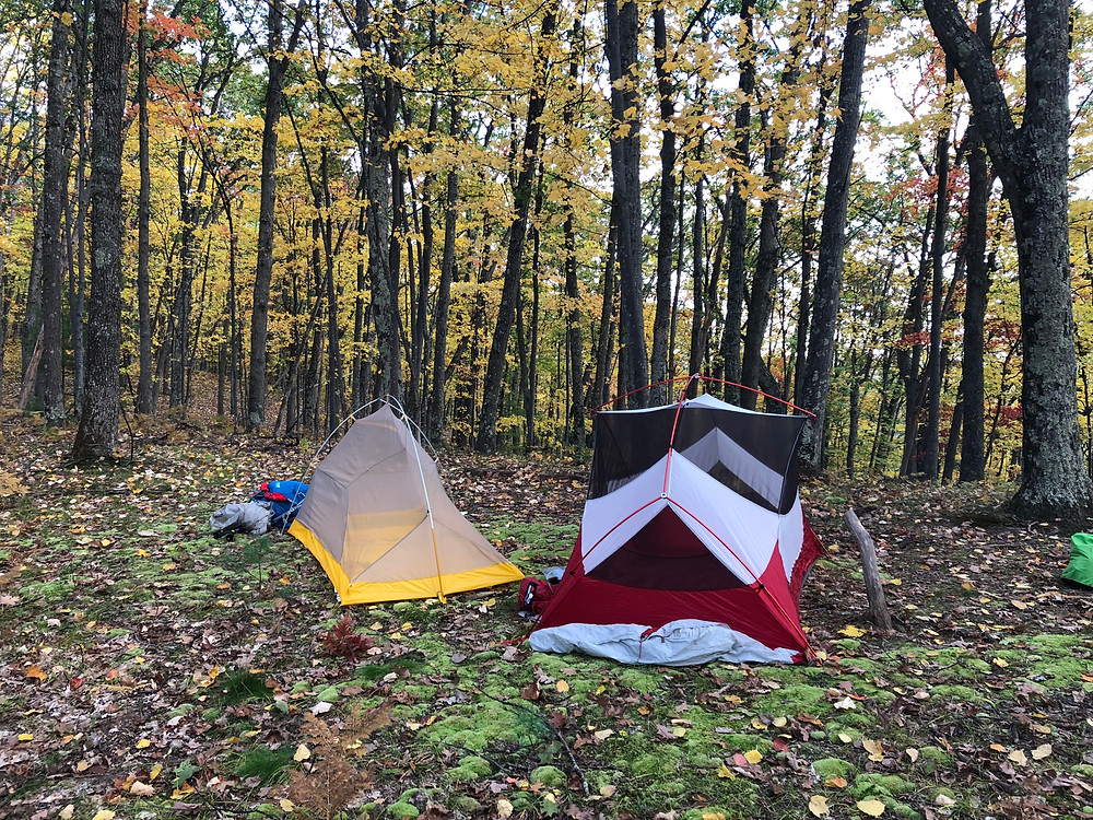 Our first campsite on the North Country trail, in a yellow forest
