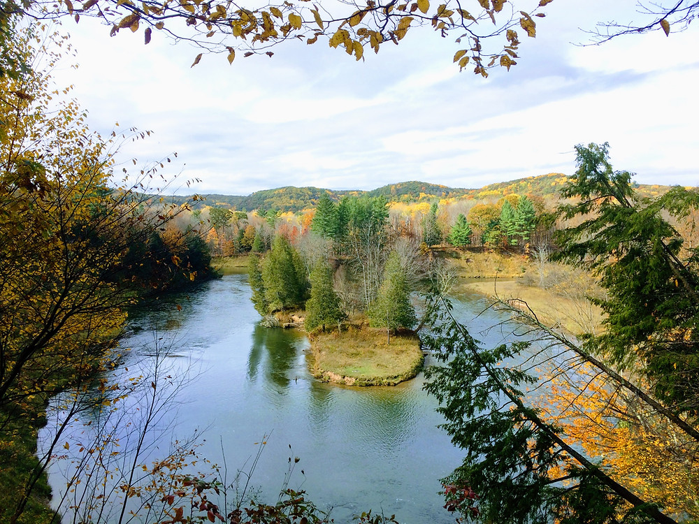 A beautiful view of the Manistee River in the fall, taken from the trail