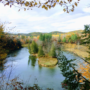 The Manistee River Trail Loop  (2017)