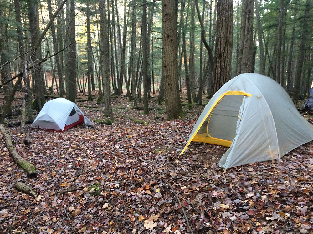 Our second campsite, on the Manistee River Trail