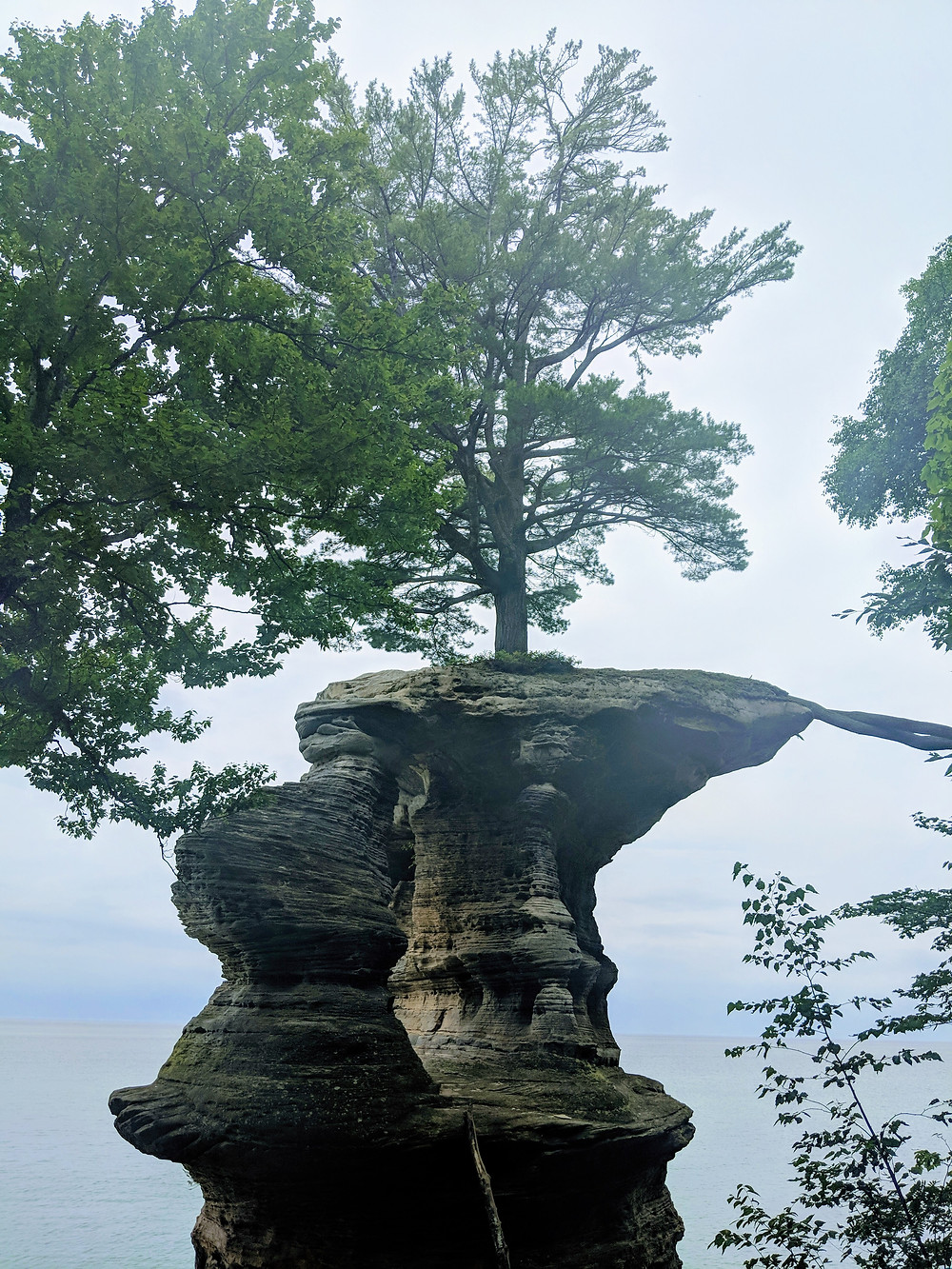 Chapel Rock - large rock formation with tree growing out of it