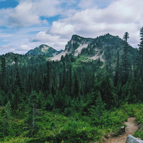 Days 140-145 // rainier, trail magic, and getting sick