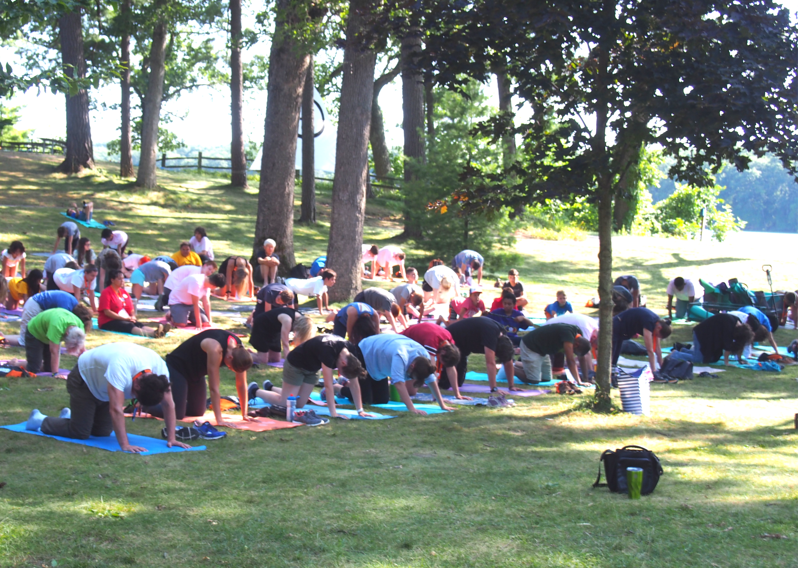 Landscape of campers doing yoga