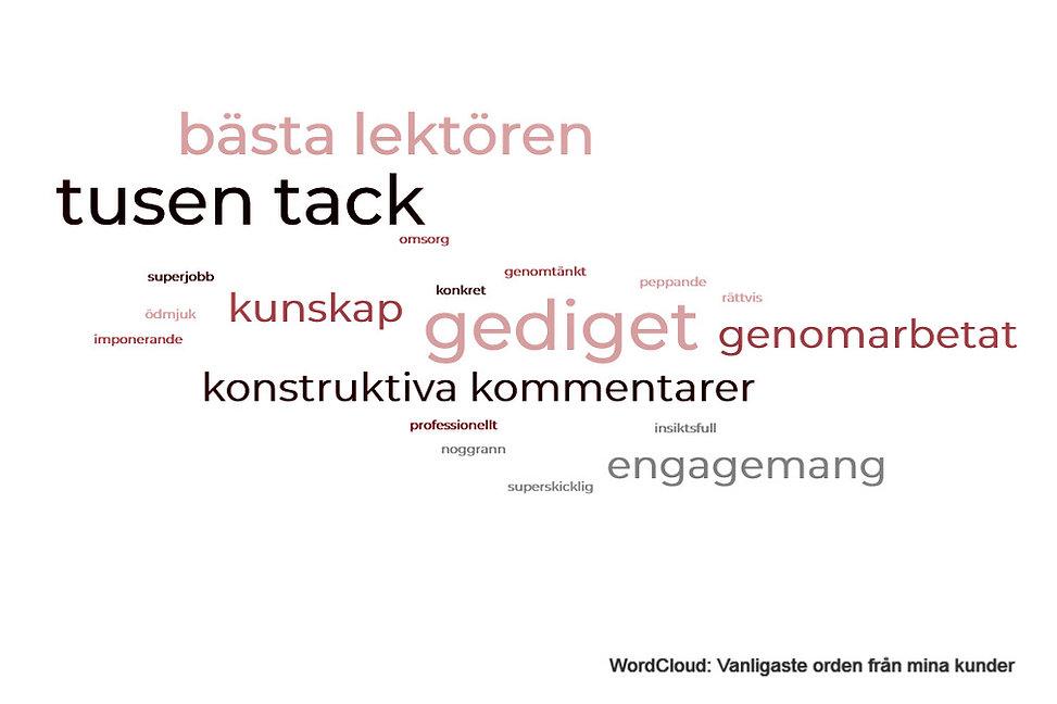 wordcloud(1)_edited.jpg