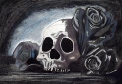 skull seven
