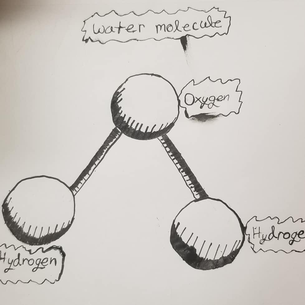 MOLECULE WATER