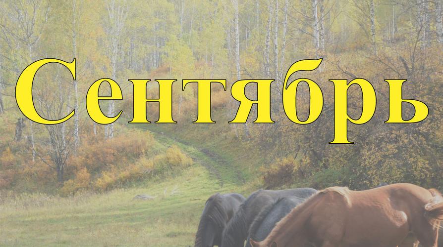 Конные прогулкипо Алтаю Сентябрь 2021
