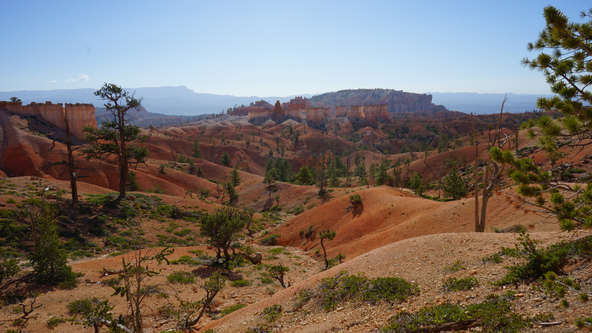 Bryce Canyon, UT 13