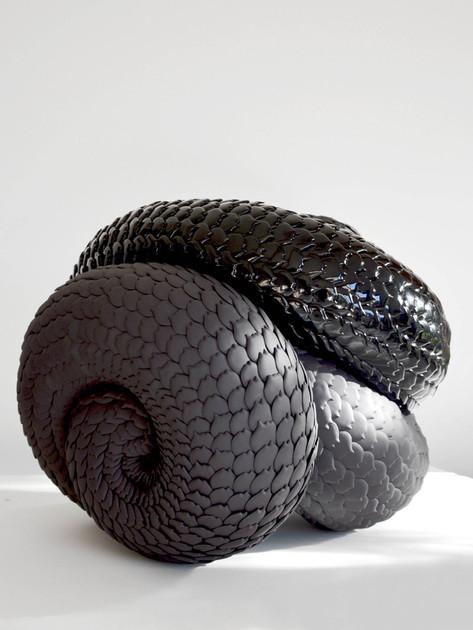 Black knot