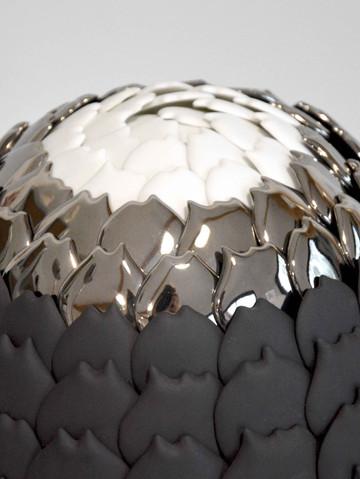Echeveria Silver Queen