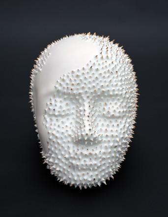 porcelain skull, skull art