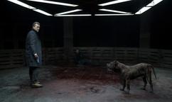 Han Solo the Bullet Head Dog with Antonio Banderas