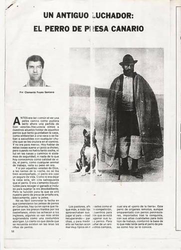 Old article about Presa Canario