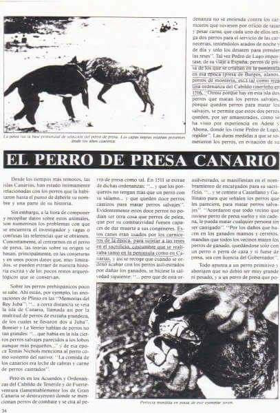 Presa Canario Historical Documents