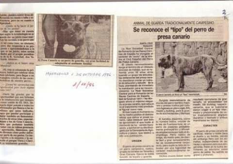historical presa canario article