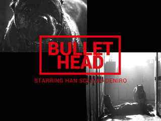 Han Solo the Bullet Head Dog Fan Art