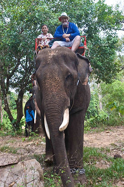 Elephant riding in the forests of Koh Chang Thailand
