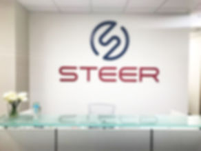Steer Tech 3 - edited.jpg