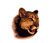 Chestnut Elementary Dunwoody GA Cougars