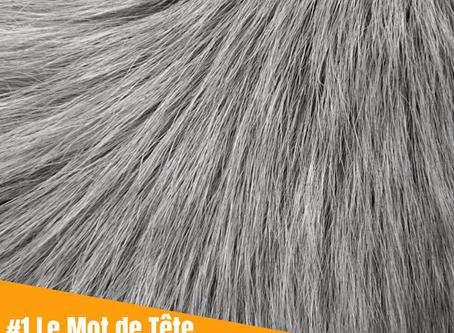 LMT #1 - Au Poil !